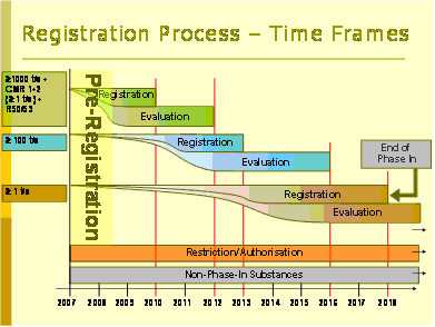 REACh Registration Process