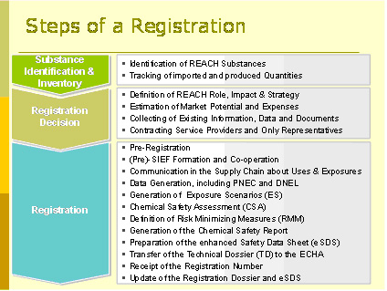 REACh Steps of Registration